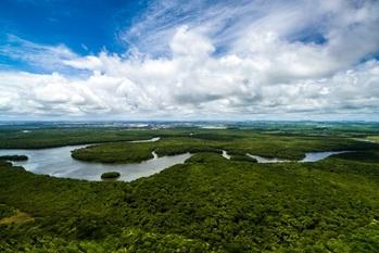 形骸化,サミット,アマゾン森林火災